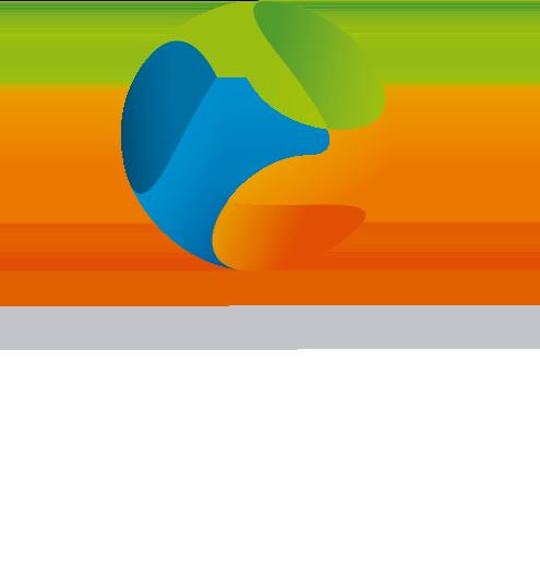 BICA Consultores